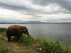 Sri Lanka Snapshot